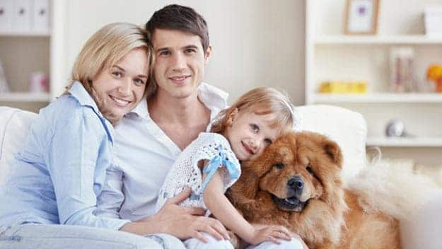 Wills & Trusts dog-young-family Direct Wills Gravesend
